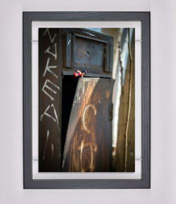Œuvre d'art contemporain - Samsofy - Art urbain